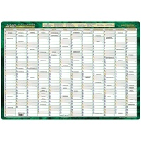Year Planner 2018 500x700 unframed Recycled Writeraze LAMINATED 11880-18
