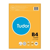 Envelopes 353x250 B4 Kraft Gold PS Peel N Seal Tudor 118014 140227 - pack 50