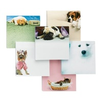 Post-It Note 6355PETG3 99mmx97mm Super Sticky Assorted Design 75 Sheets 3m dogs and cats