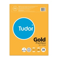 Envelope 405x305 Peel and Seal Heavyweight GOLD Tudor Pack 25 1040252 140254
