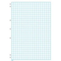 Graph Pad A4 2mm 7 Hole Punched 25 Sheets GP840 Impact